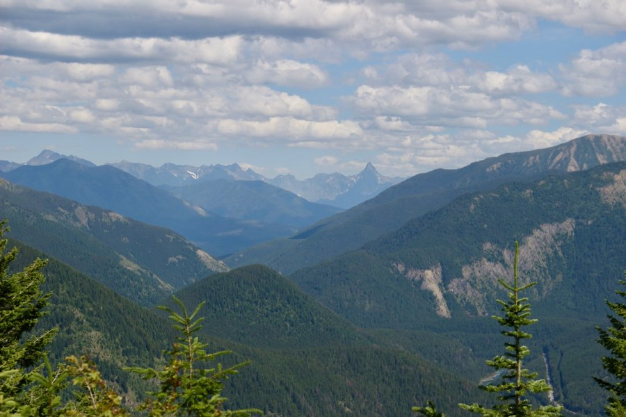 A long view of the tree-covered mountains of Glacier National Park, in Montana. ©KettiWilhelm2020