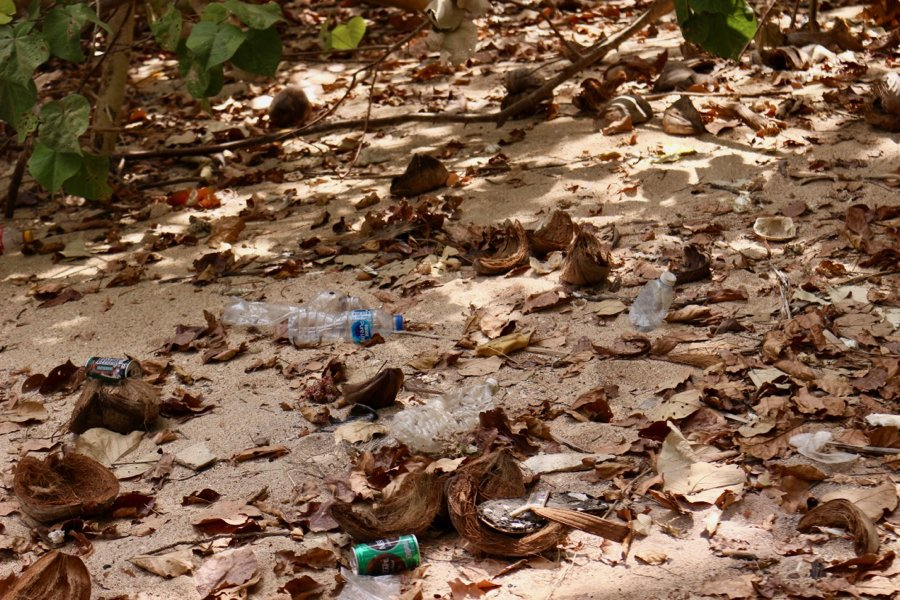 Plastic pollution in Thailand: A beach scattered with single-use plastics and other garbage, which is one of the sustainability problems with cruising. ©KettiWilhelm2020