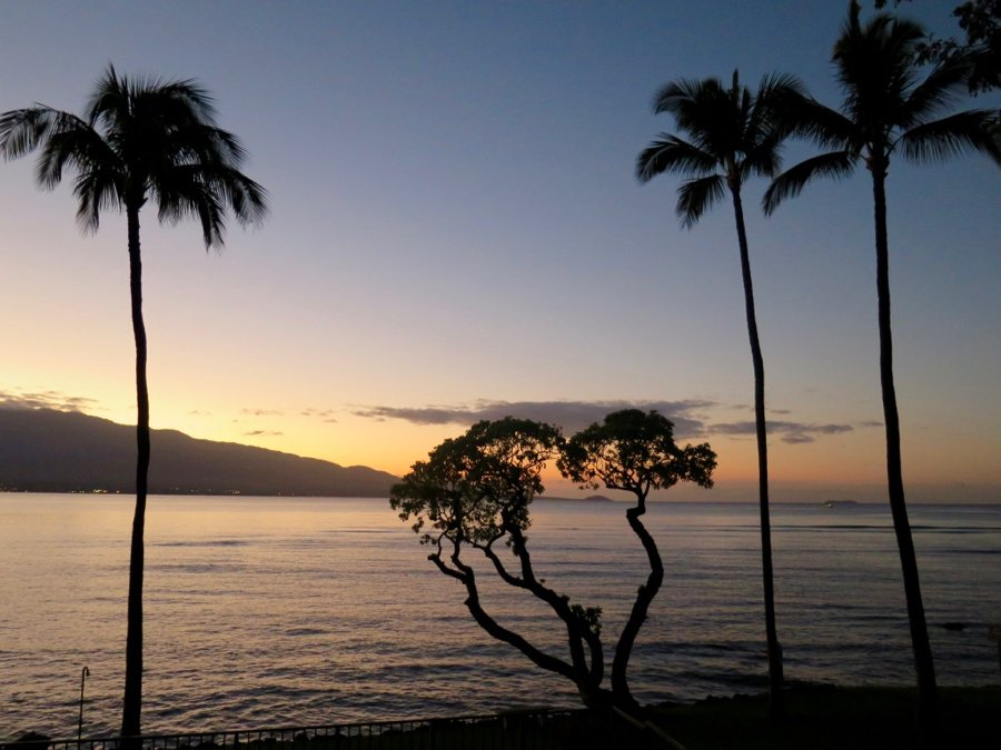 A sunset and palm trees on Maui, Hawai, from the blogger's last trip therei. ©KettiWilhelm2020
