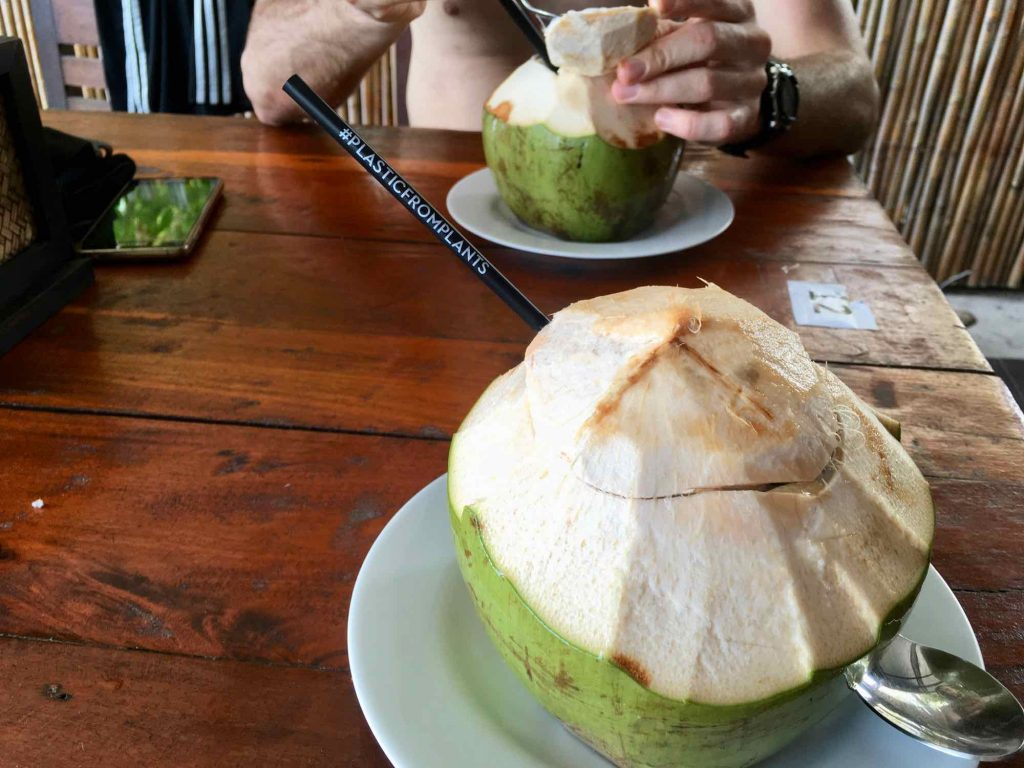 A plastic-free straw, made of plant-based bioplastic, sticks out of a fresh, green coconut. Saying no to straws is one easy tip for more sustainable travel. ©KettiWilhelm2021