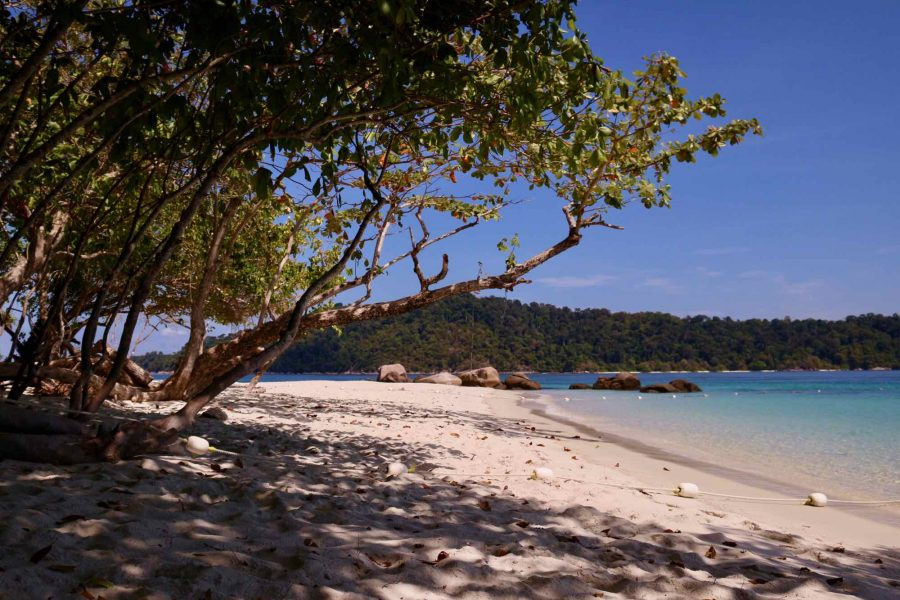 A clean white sand beach in Thailand, with sunlight streaming through the leaves of a tree draping toward the water, and an island in the distance. ©KettiWilhelm2021